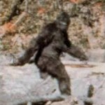 Bigfoot picture