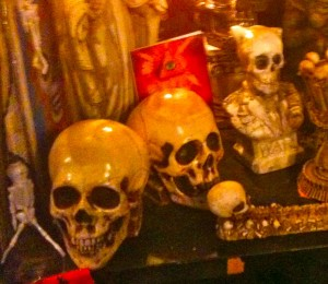 Skulls in a Seattle Shop