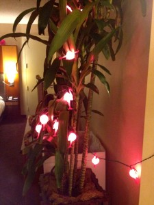 Pink flamingo lights