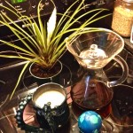 Picture of Bromeliad, Chemex, Globe, and a dragon-shaped mug.